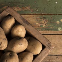 batatas-mirense-slider-batatas